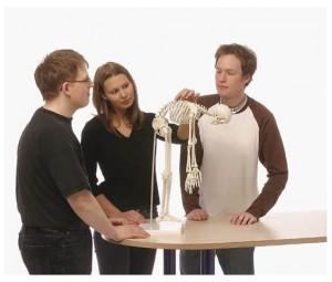 modelli anatomici scheletro, modello con colonna flessibile Paul