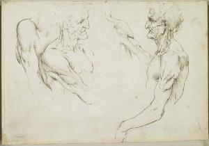 Tavole anatomiche – Anatomia dello scheletro del braccio e della gamba