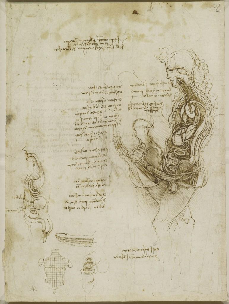 Emisezione di uomo e donna durante l'atto del coito