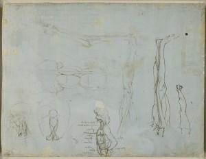 Tavole anatomiche Leonardo, anatomia della gamba